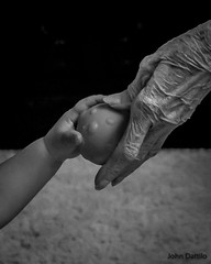 The passing of the ball (flintframer) Tags: play children black white bw dattilo wow people canon eos 7d markii ef1635mmii life circle ball