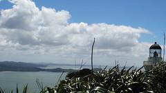 023 (wearsunscreen.kiwi) Tags: manukau heads