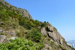 DSC_8511 (sch0705) Tags: hk hiking kowloonpeak standingeagleridge