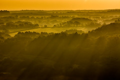 Treetop Shadows (Peter Quinn1) Tags: corfecastle dorset purbeckhills isleofpurbeck mist treetops shadows early sunrise dawn