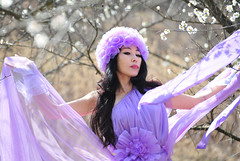 . (daniel0027) Tags: palepurple purple portrait plumblossom spring fragrance white whiteflower branch purpledress intheearlyspring