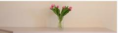 Tulipes (Pi-F) Tags: minimaliste tulipes bouquet fleur