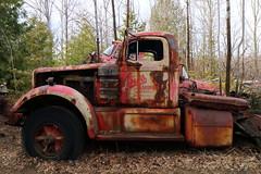 IMG_2691 (Irina Souiki) Tags: rusty crusty cars mcleansautowreckers milton ontario old oldcars