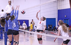IMG_1888 (SJH Foto) Tags: girls volleyball teen teenager team quickset storm u14s net battle spike block action shot jump midair burst mode