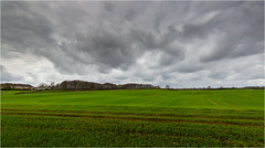 Farbig grau (Beppe Rijs) Tags: deutschland germany schleswigholstein schlei wolken wolkendecke frühling spring landschaft landscape natur nature field feld gras baum tree horizont horizon grün green clouds grau grey farbig colored line linie