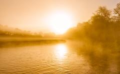 Sunrise Mist (Anthony White) Tags: sturminsternewton england unitedkingdom gb orangesunrise nopeople riverstour dorsetuk mill sturminstermilll