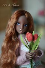 IMG_5735 (Cleo6666) Tags: lana lillycat cerisedolls marron glacé bjd doll chibbi