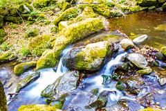 A little waterfall... (Don Costello) Tags: nature waterfall dam hunedoara retezat landscape beauty water forest romania nikon d3300