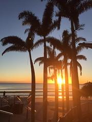 gday folk from Australia! (Jeannine DW) Tags: beach sand palmtrees waves sunrise australia orange