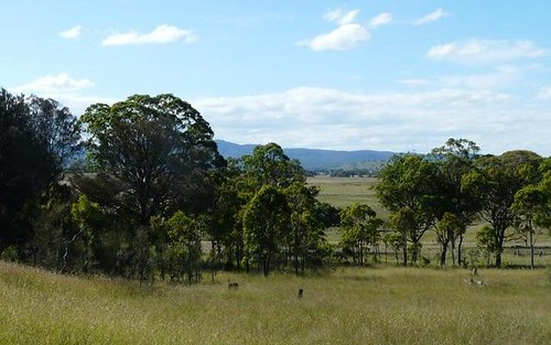 1 Haddocks Road, Tenterfield NSW 2372