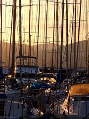 Waiting to go back at sea (borisvasilev) Tags: masts boat boats sun sunset dusk antibes france sea mountains wait waiting light sunlight borissnima