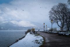 Schnee am See (Chris Buhr) Tags: schnee tegernsee bayern bavaria winter winterlandschaft landscape landschaft see lake promenade ufer outdoor leica m10 chris buhr