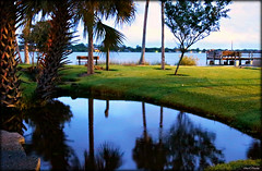 Ames Park at Twilight (Chris C. Crowley- Editing for the next month or so) Tags: amesparkattwilight amespark ormondbeachflorida twilight sundown reflections rive pond halifaxriver palmtrees dock grass outdoors park scenic landscape