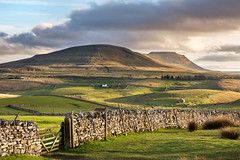 Ingleborough (matrobinsonphoto) Tags: ingleborough park simon fell mountain hill valley ribblehead hills profile north yorkshire dales national landscape outdoors nature natural light golden hour spring sunset sunlight sun side sidelight sidelit fields rural scenic scenery beautiful northern britain great british uk sky dramatic clouds moody