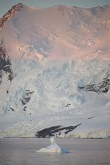 Adelaide Island majesty (i-lenticularis) Tags: antarctica antarcticpeninsula elmaritrapo180f34 dusk ice adelaideisland alpenglow icedecay snow