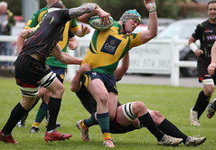 BW0Y3068 (Steve Karpa Photography) Tags: henleyhawks henley rugby rugbyunion game sport competition outdoorsport redruth