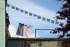 - (txmx 2) Tags: hamburg laundry clothesline ignorethetagsonwhitetheyarefromastupidflickrrobot