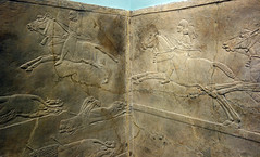 Lion Hunts of Ashurbanipal, corner view (profzucker) Tags: sculpture london art ancient iraq lion palace relief beginning britishmuseum gypsum tigris mosul hunt assyrian excavated ashurbanipal neoassyrian ninevah rassam 645bce