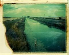 Bevill's Leam Drain, Pondersbridge 15_8_13