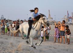 "Corregudes  de les "" JOIES "" (Vte.Moncho) Tags: horses horse beach valencia sport caballo caballos pueblo playa deporte carreras pinedo poblacion joies corregudes"