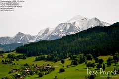 LE MONT BLANC (LizziePruneda) Tags: white snow france tree green amazing montblanc megeve