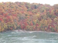 Autumn Colors in Niagara Gorge (William Wilson 1974) Tags: autumn trees red orange color tree fall nature colors leaves yellow forest landscape niagarafalls leaf buffalo pretty foliage westernnewyork wny