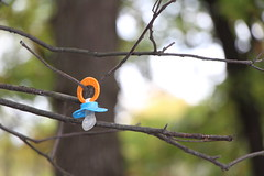 pacifier. spears woods. october 2013 (timp37) Tags: baby fall illinois woods october spears willow springs pacifier 2013