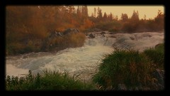rogue river (GeoAllAroundTheWorld) Tags: wild fall nature oregon river landscape photography fishing wildlife rapids rafting flickrandroidapp:filter=salamander
