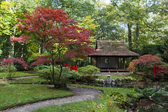 Japanse tuin in Clingendael (elfjezwelgje) Tags: park autumn fall garden japanese japanesegarden denhaag thehague clingendael japansetuin