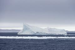 Antarctica - Day four0742 (GLRPhotography) Tags: landscape antarctica iceberg 18200 weddellsea