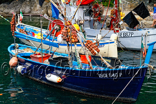 Close Up View of Ligurian Fishing Boats Moored in a Harbor, Portofino, Liguria, Italy