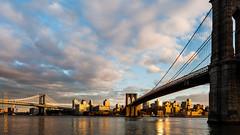 New York (Edi Bähler) Tags: newyorkcity bridge sky newyork building nature skyline clouds river natur perspective himmel wolken structure eastriver waters brücke fluss bauwerk suspensionbridge gebäude perspektive hängebrücke gewässer vereinigtestaaten 2470mmf28 nikond800 brooklynbridgenewyorklm manhattanbridgenewyorklm