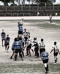 Rugby (bertanuri bcn) Tags: barcelona leica travel portrait holiday water cat lumix photography europe photos rugby bcn catalonia panasonic explore catalunya lanscape catalua marbella poblenou santcugat objetivo explored bertanuri fz45 jordimnico bertanuribcn