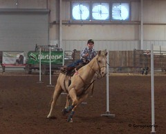 Bar None Jr Rodeo (Garagewerks) Tags: boy horse male sport youth bar cowboy all none sony sigma indoor jr pole arena rodeo poles cowgirl athlete f28 equine bending 70200mm 2875mm views100 slta77v slta65v