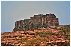 Jodhpur IND - Mehrangarh Fort 03