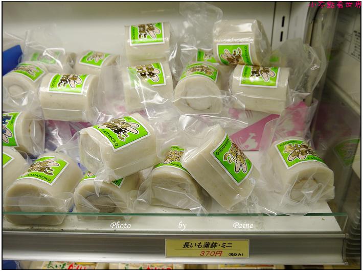 鳥取必玩 鳥取砂丘 (7).JPG