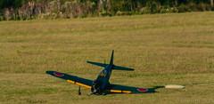 VolandoEnOtono-3266