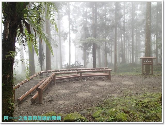 南投溪頭自然教育園區台大image121