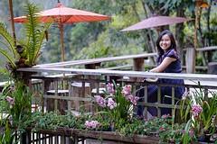MKP-118 (panerai87) Tags: maekumporng chiangmai thailand toey 2017