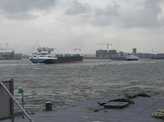 EUPHORY (streamer020nl) Tags: binnenvaart ship schip schiff euphory 2011 southcarolina ij harbour amsterdam 2017 070317 7march17 holland nederland paysbas niederlande centrum binnenstad city