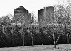 031817-910Fx (kzzzkc) Tags: nikon d7100 usa missouri kansascity nelsonatkins museumofart cityscape tree building coolers