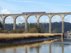 150108 Calstock Viaduct (4) (Marky7890) Tags: gwr 150108 class150 sprinter 2p84 calstock railway train cornwall calstockviaduct tamarvalleyline