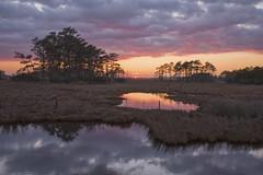 Sunset Pools (twcrowe50) Tags: sunset chincoteagueisland virginia chincoteaguenationalwildliferefuge