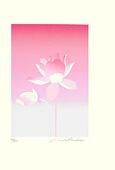 Sacred lotus (Japanese Flower and Bird Art) Tags: flower nelumbo nucifera nelumbonaceae minoru kaneko modern screenprint print japan japanese art readercollection