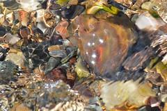 Seaside magic ((fiona) thank you for your visit) Tags: sea magic vibrant nikon aperture appealing beautiful beach belief calmness camera calm hopehappinesshealth heaven faith fairies angels