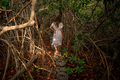 Tulum CESIAK org national park cenote mangroves