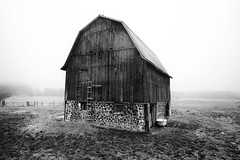old barn, spring (twurdemann) Tags: agriculture architecture barn blackandwhite building canada farm field fog fujixt1 horses mist niksilverefex northernontario oldgardenriverroad ontario rain rural saultstemarie sky spring storage weather weathered xf14mm