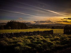 Vapour Trails and Setting Sun (Rae de Galles) Tags: wales cymru evening glow sunset clouds skies sky forest tree trees farm gate field fields grass nationalpark nature breconbeacons beacons brecon aeroplane vapourtrail