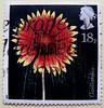 great stamp Great Britain 18p blanket flower (Kokardenblume, Gaillardia aristata, Гайлардия, ) timbre UK United Kingdom stamps England selo sello stamps GB stamp Great Britain GB England UK แสตมป์ บริเตนใหญ่ pulları İngiltere frimärken Storbritannien टिकट (stampolina, thx for sending stamps! :)) Tags: markica antspaudai маркица pulları tem perangko timbru england gb greatbritain unitedkingdom uk commonwealth grosbritannien british briefmarken スタンプ postzegel zegel zegels марки टिकटों แสตมป์ znaczki 우표 frimærker frimärken frimerker 邮票 طوابع bollo francobollo francobolli bolli postes timbres sello sellos selo selos razítka γραμματόσημα blanketflower kokardenblume gaillardiaaristata гайлардия