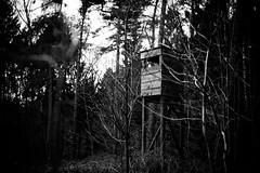 On the lookout II (Ir3nicus) Tags: sonsbeck nordrheinwestfalen deutschland nikond750 dslr fullframe outdoor 50mm afs50mm14g prime treestand deerstand hochsitz jagdsitz hochstand blackandwhite bw monochrome schwarzweis forest wald germany tüschenwald contrast dark branches trees nature natur